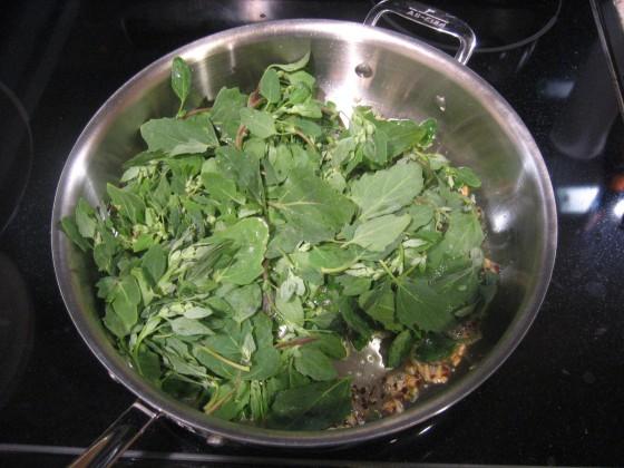 Raw Quinoa3